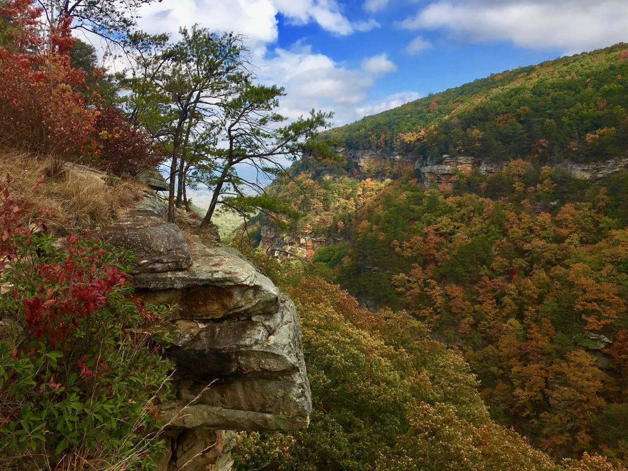 Cloudland Canyon in northwest Georgia