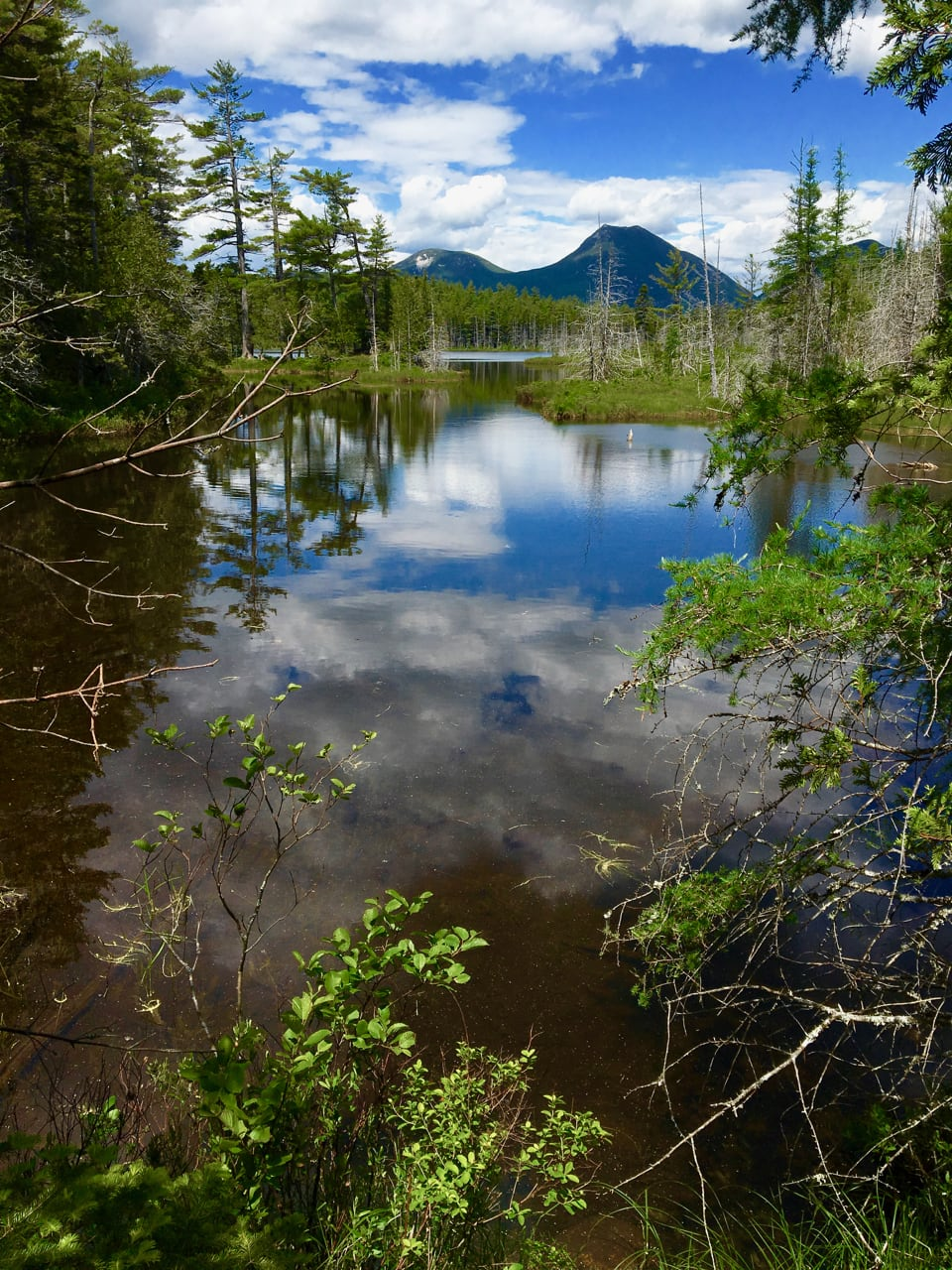 Grassy Pond in Baxter State Park