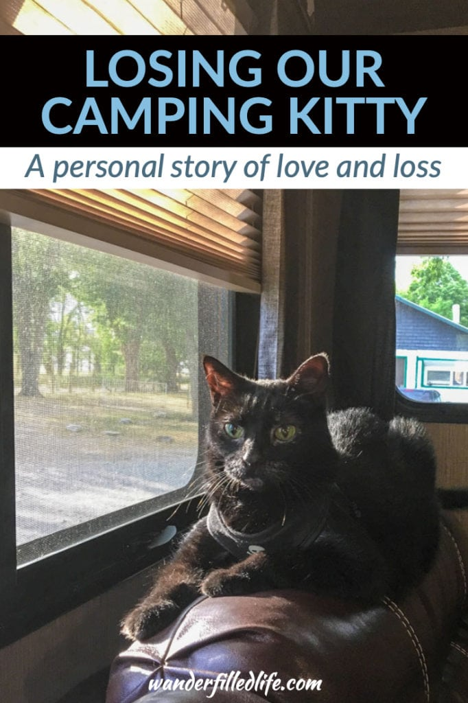 A very personal story of losing our cat, Alee, to cancer. She was Grant's cat for nearly 15 years and losing her has been emotionally tough.