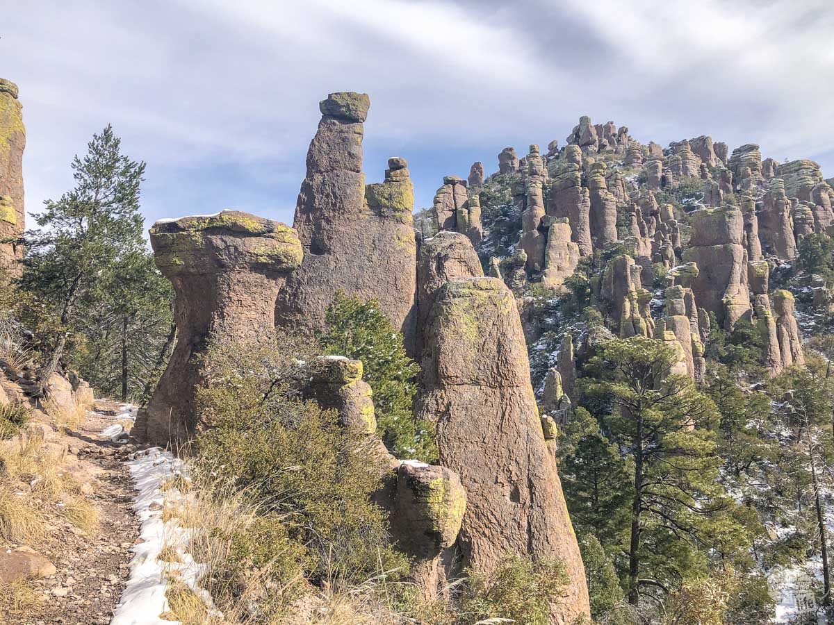 The Hailstone Trail as it winds through Rhyolite Canyon in Chiricahua National Monument.