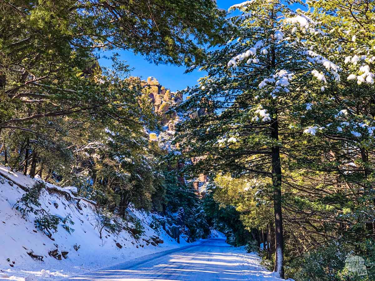 Driving the Bonita Canyon Drive in Chiricahua National Monument with a bit of snow still on it.