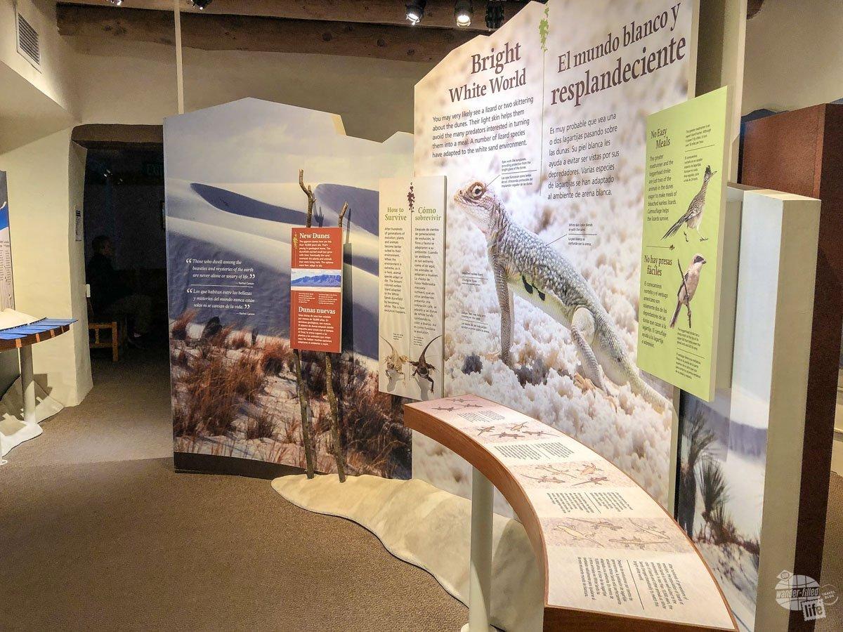 Inside the visitor center at White Sands National Park.