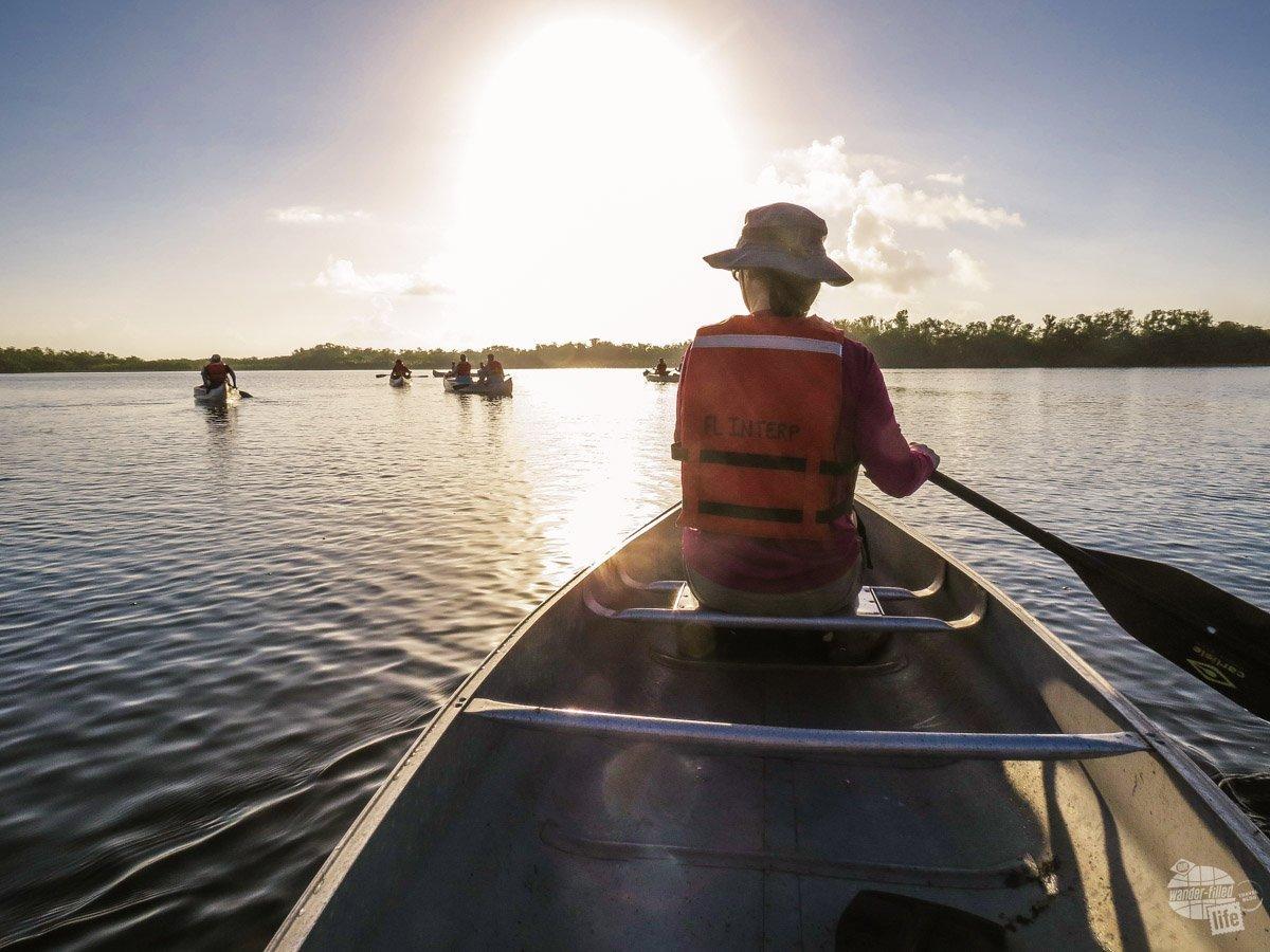 Bonnie paddling out on Nine Mile Pond.