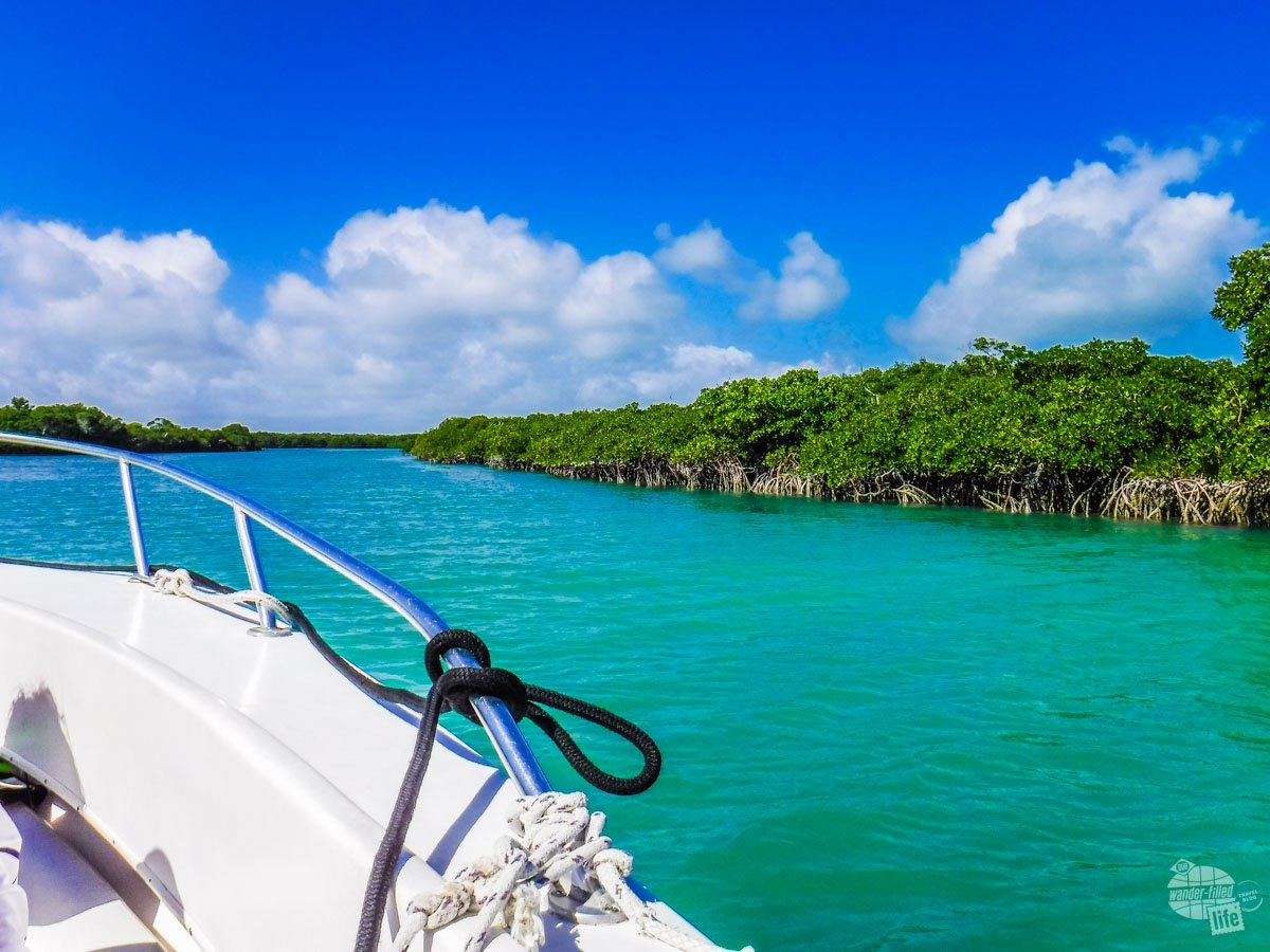 The blue waters of Biscayne National Park.