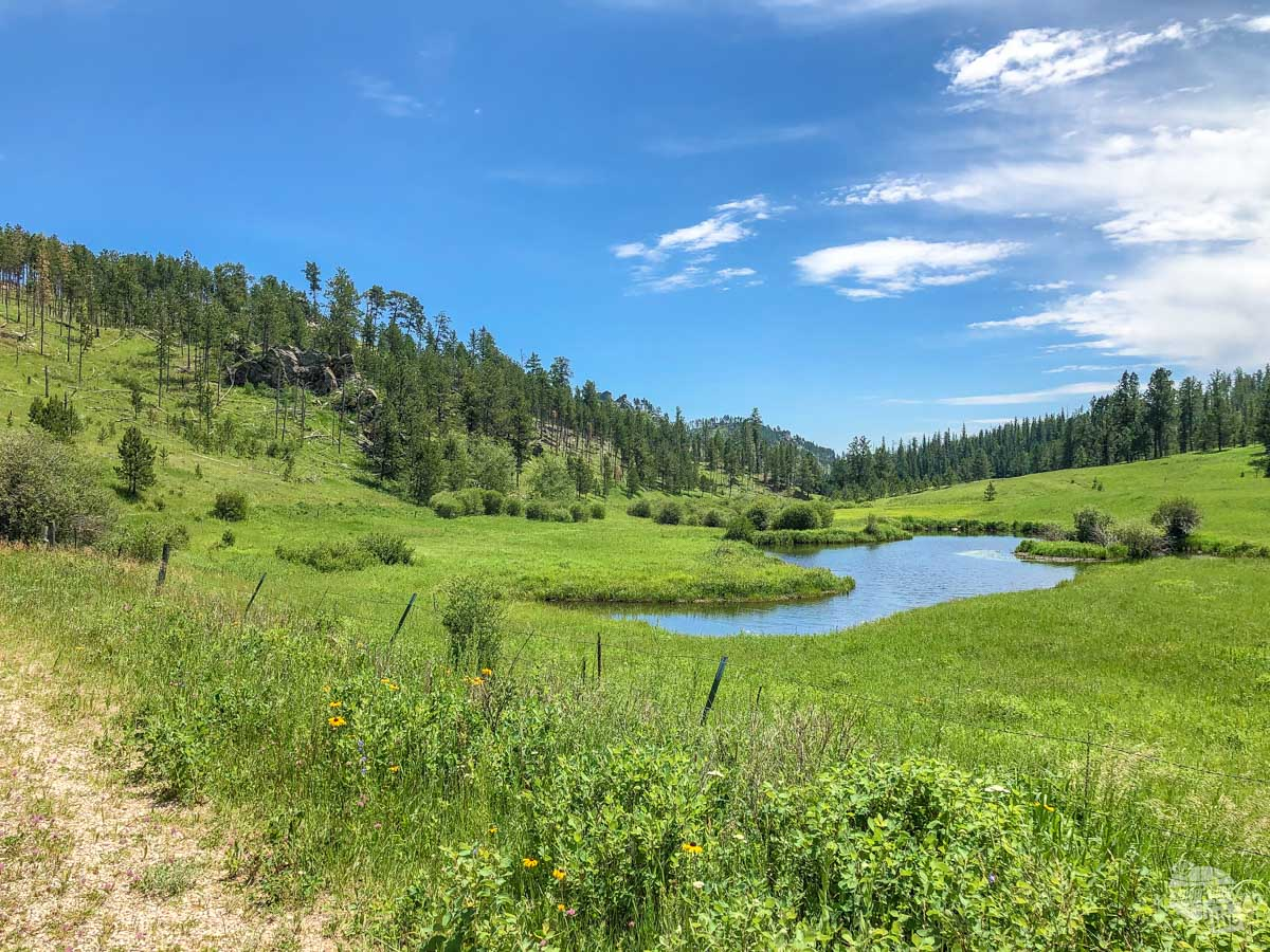 Another scenic view along the ATV trails in the Black Hills.