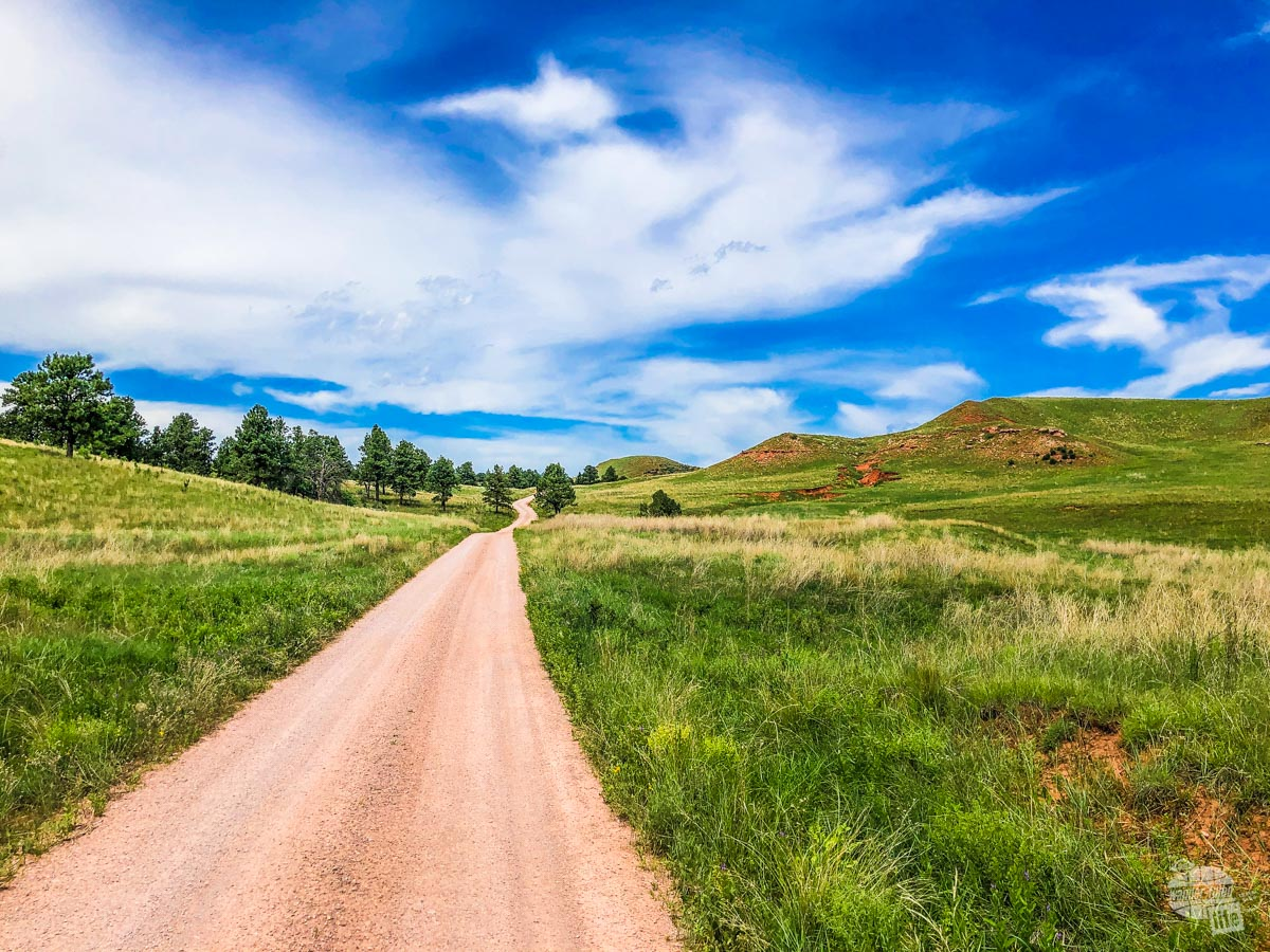 One of the dirt roads in Wind Cave National Park.
