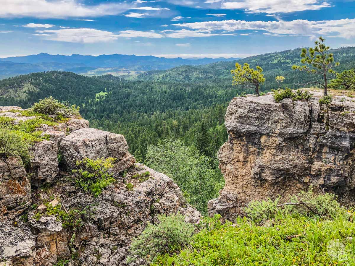 Exploring on an ATV is great way to see the Black Hills backcountry.