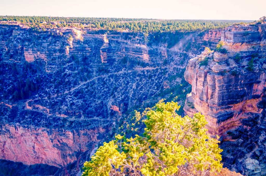 The Bright Angel trail in the Grand Canyon.
