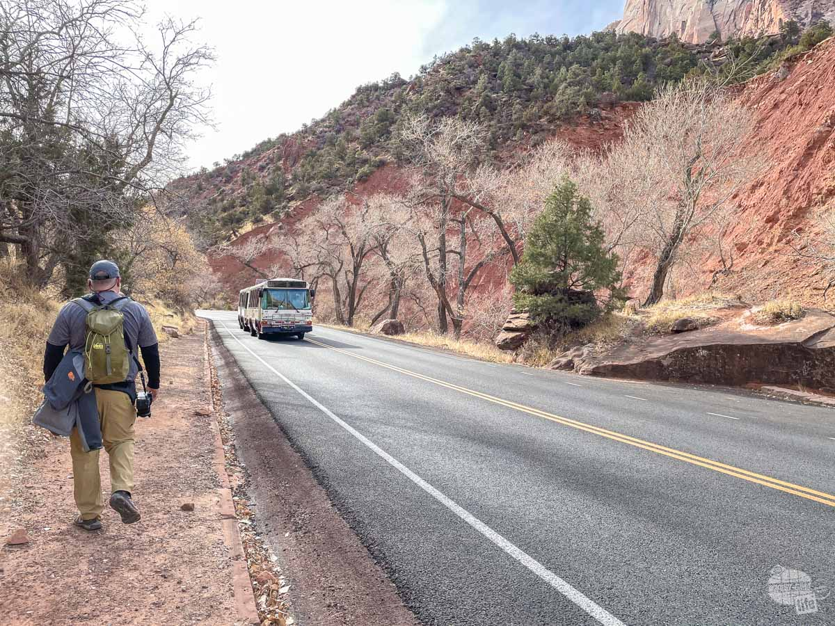 Walking along the Scenic Drive at Zion National Park.