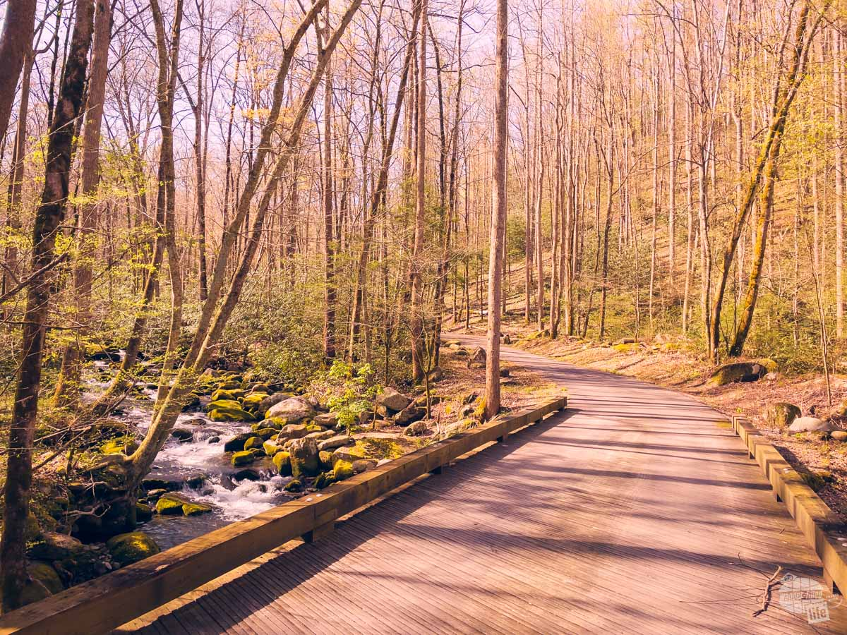 Roaring Fork Motor Nature Trail at Great Smoky Mountains NP