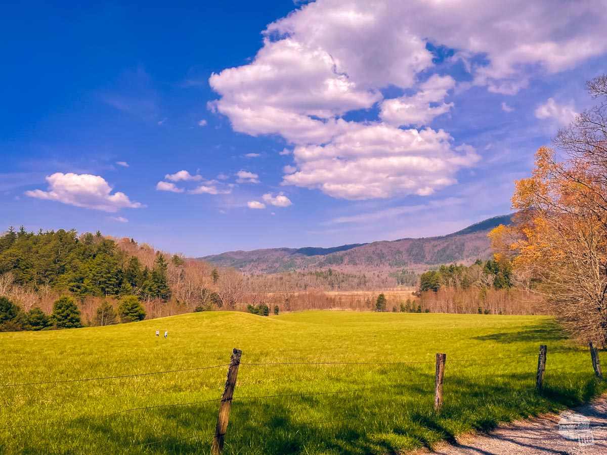Cades Cove at Great Smoky Mountains NP.